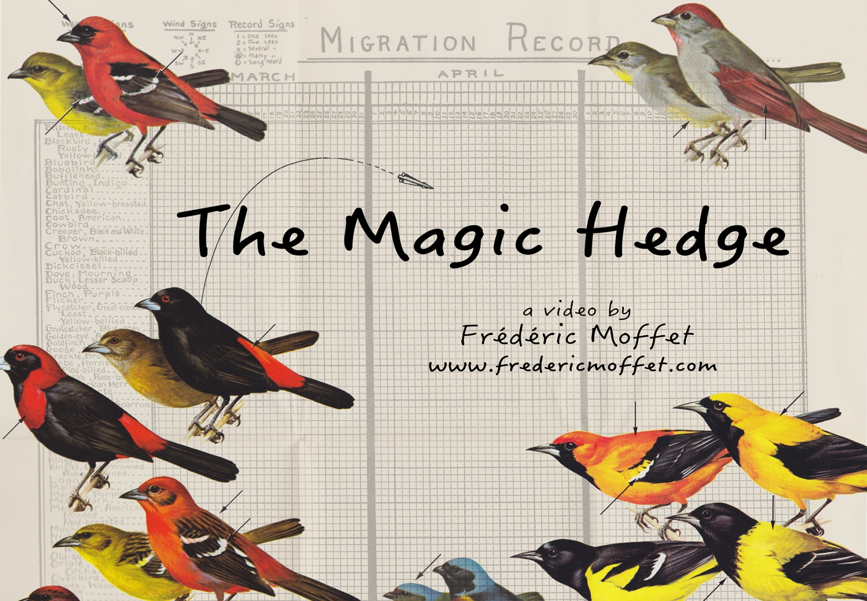 Magic_Hedge_Poster